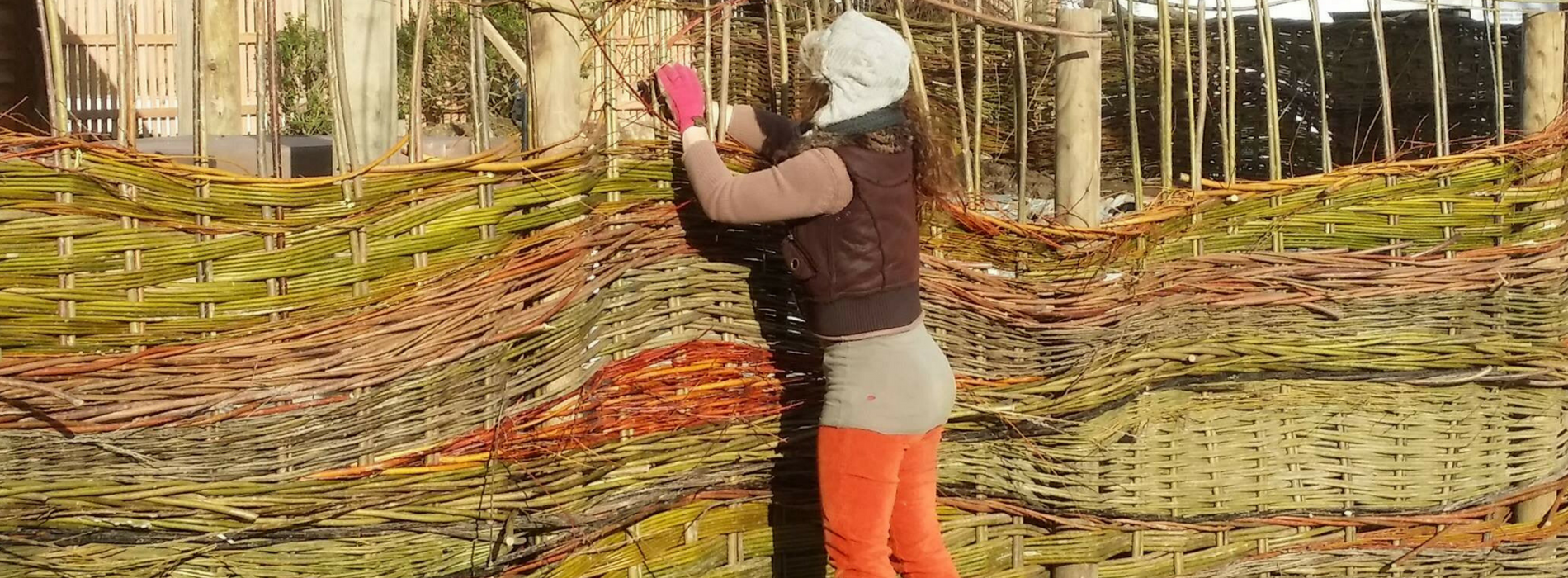 Wyldwood Willow - Fence Weaving