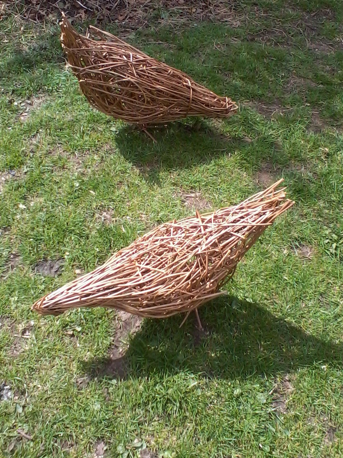 WILLOW Wicker CHICKENS
