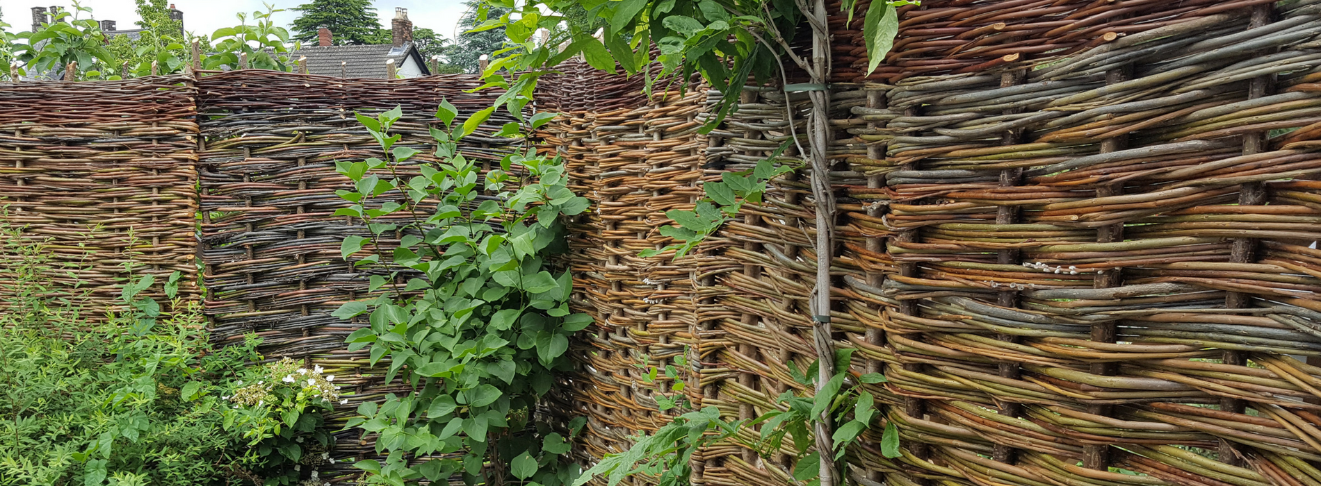Woven willow garden fence