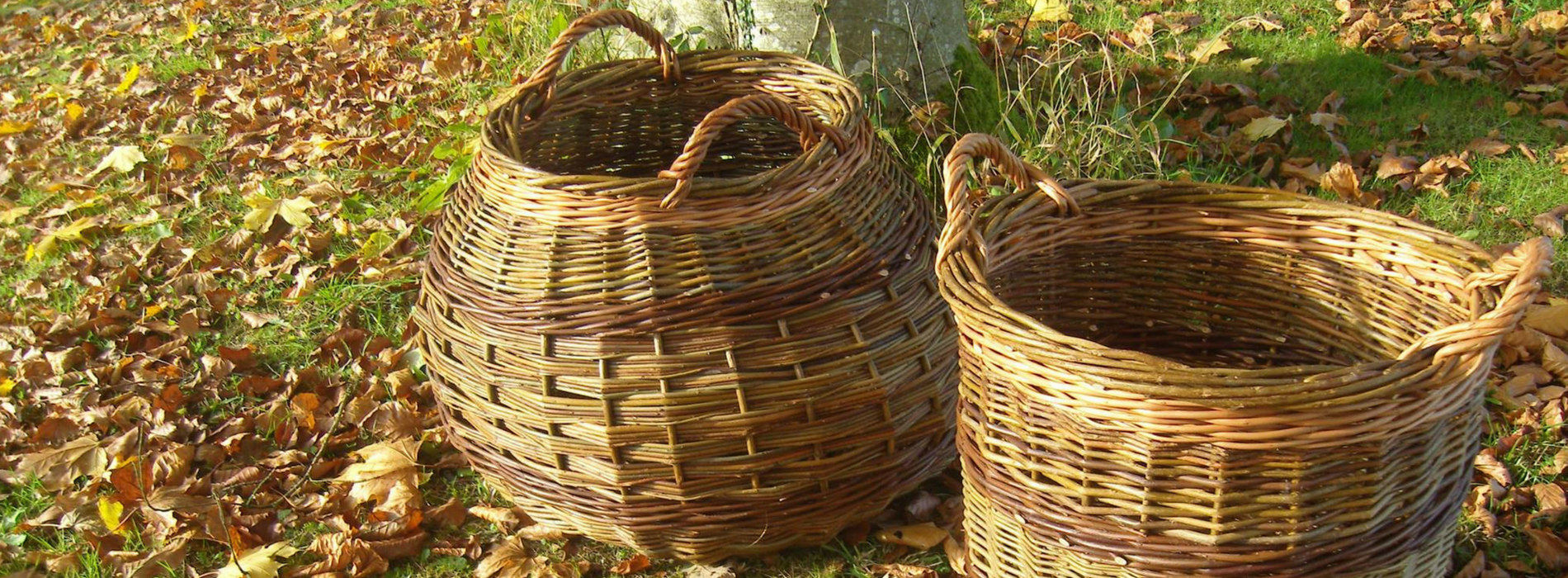 Willow Baskets Wyldwood Willow